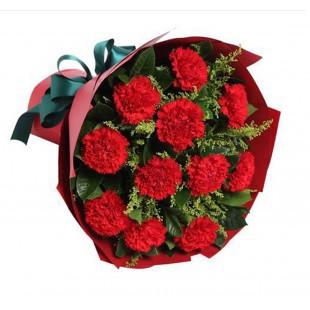 【大毛花艺】特惠!!同城速递11朵红色康乃馨可预订